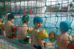 Pierwsze zajęcia maluszków na basenie 4 kwietnia
